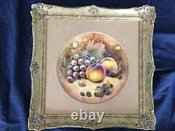 Ex Royal Worcester Artist. Handpainted Fruit Coupe Plate set in gold frame