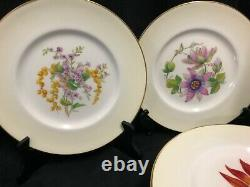 Royal Worcester Bermuda Flowers Set of 12 hand painted and signed plates