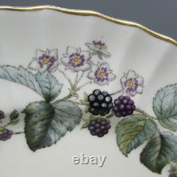 Royal Worcester Bone China Lavinia Cream Service for Four 20pc Set
