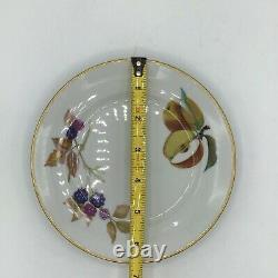 Royal Worcester EVESHAM GOLD 24pc Service For Four Full 6pc place settings