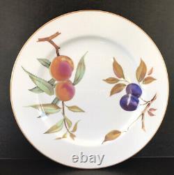 Royal Worcester Evesham Dinner Plates 10 1/8 Set Of 8 Gold Rim England