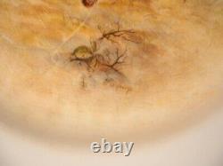 Royal Worcester SIGNED DINNER SET Handpainted Game Birds Maybury Stinton