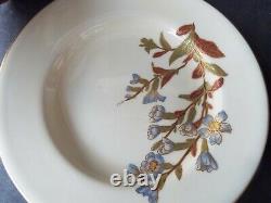 Set 6 Royal Worcester Antique Blush Ivory Botanical Floral Art Nouveau Plates